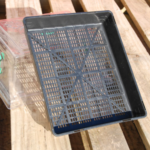 Lattice Seedling Tray - Heat N Grow [350mm x 295mm x 65mm]